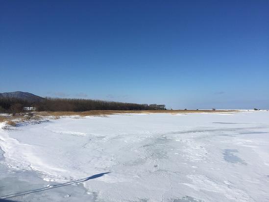 真冬のサロマ湖 サンゴ草の湿地帯 キムアネップ岬 佐呂間町浜佐呂間