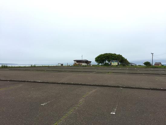 初夏のサロマ湖 キムアネップ岬 野草 北海道佐呂間町浜佐呂間